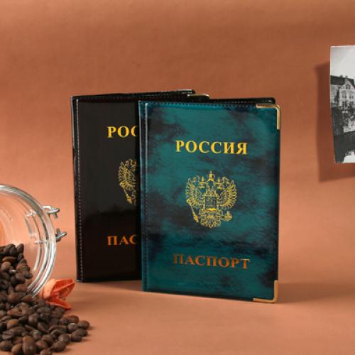 Обложка для паспорта 9,3х13,4см, ПВХ, 2 цвета, #P2015-21